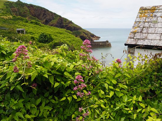 Pendoggett, UK: Port Isaac from hill
