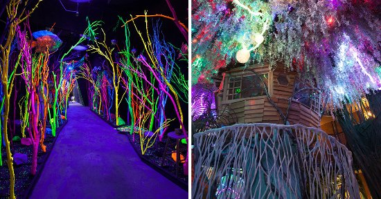House Of Eternal Return Santa Fe New Mexico Glow Forest And Treeeeee House Picture Of Meow Wolf Santa Fe Tripadvisor