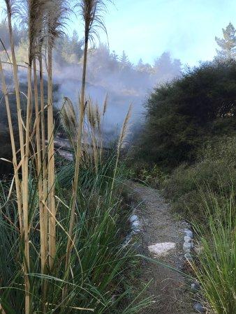 Taupo, Yeni Zelanda: photo2.jpg