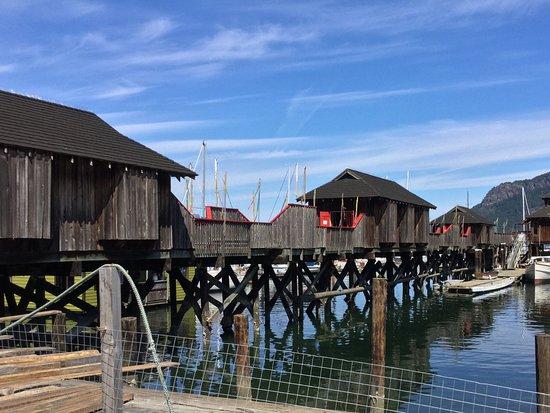 Cowichan Bay, Canada: Dock.