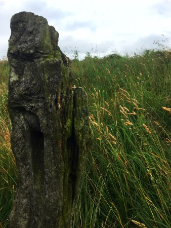 County Meath, أيرلندا: photo3.jpg
