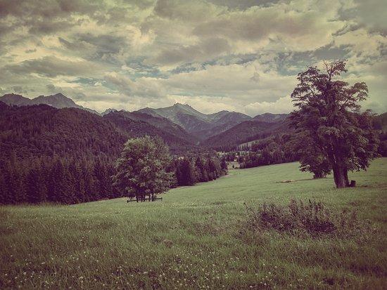 Tatranska Javorina, Slovaquie : Tatry od Zamocku v Tatranskej Javorine
