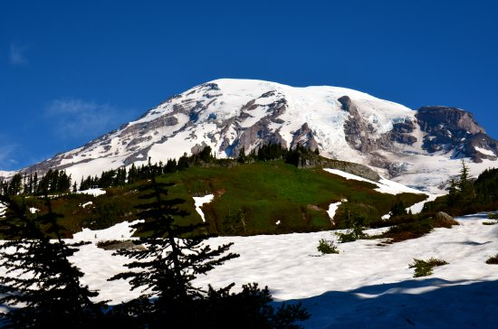 Mount Rainier: Mt. Rainier from the Paradise Road
