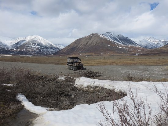 Northern Alaska Tour Company : The ATV her took us around in