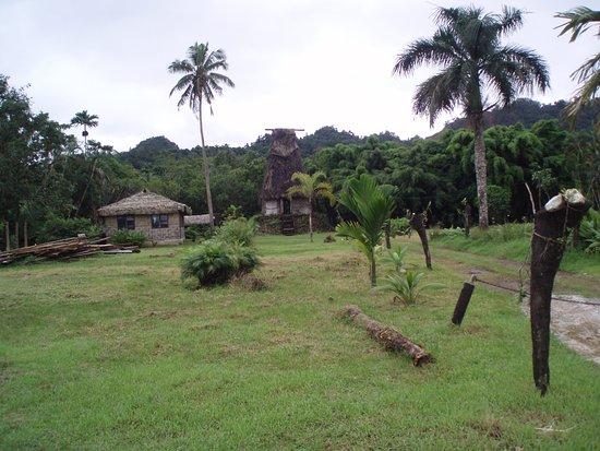 Suva foto