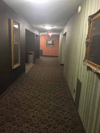 Hotel Candy Hall Review