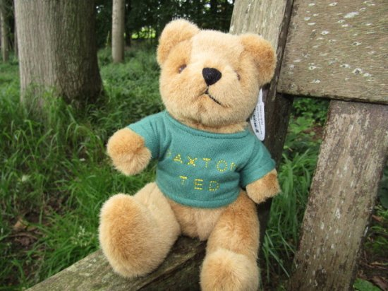 Berwick upon Tweed, UK: Paxton Ted for my granddaughter Paxton