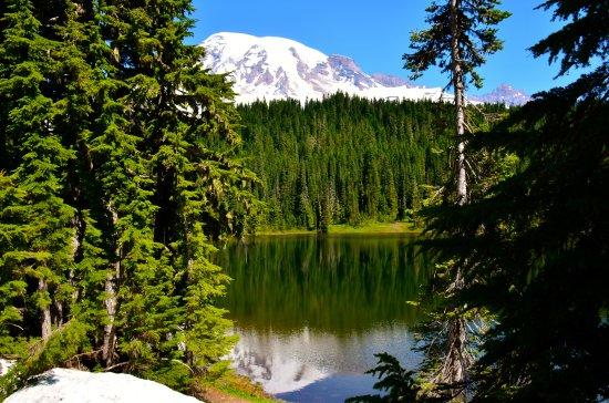 Paradise Loop : Reflection Lake