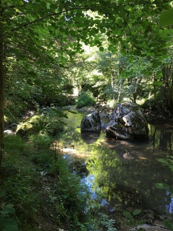 Montgaillard, ฝรั่งเศส: Les Sapines B&B