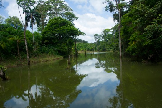 Boca Tapada, Коста-Рика: Laguna