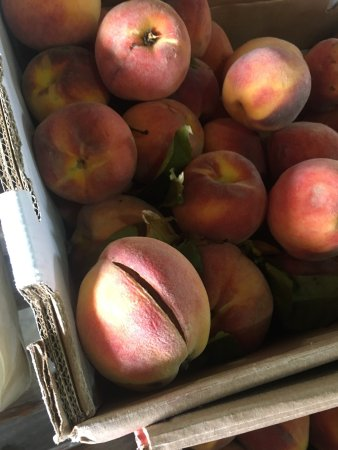 Troy, OH: Not so nice peaches.