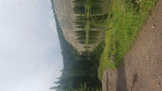 Telluride, Κολοράντο: 20170719_151929_large.jpg