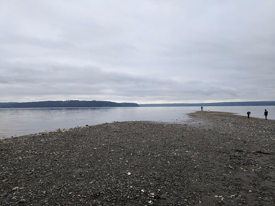 Dosewallips State Park: Along the Hood Canal