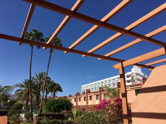 Billede af jardin del sol apartments playa for Bungalows jardin del sol gran canaria
