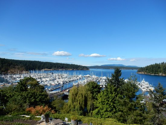 From our hotel balcony - Friday Harbor