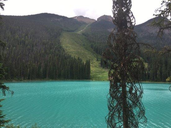 Yoho National Park, Canada: photo3.jpg