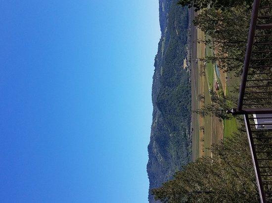 나파 밸리 사진