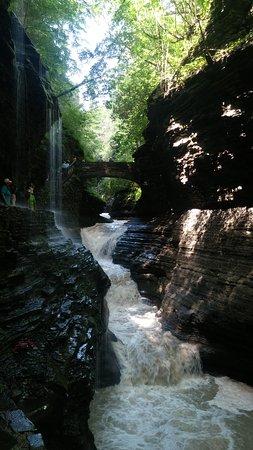 Watkins Glen State Park Campground: Watkins Glen Falls