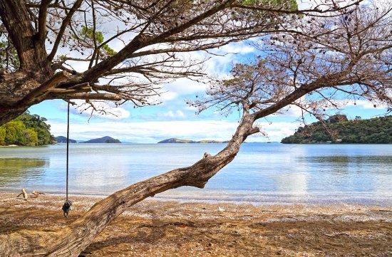 Shelly Beach Top 10 Holiday Park
