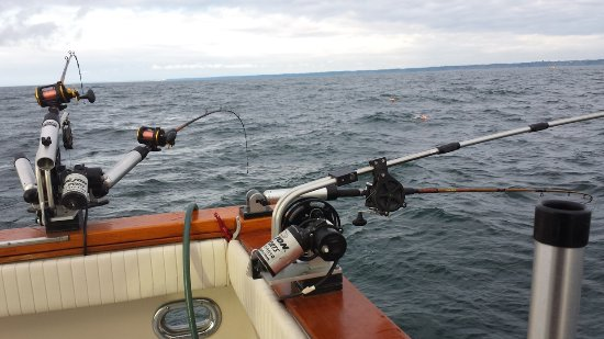 Port Washington, WI: Great fishing gear provided by C&D Charters.