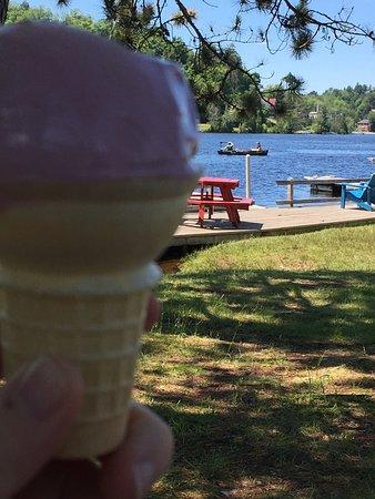 Saranac Lake, NY: Black raspberry on a sunny day!