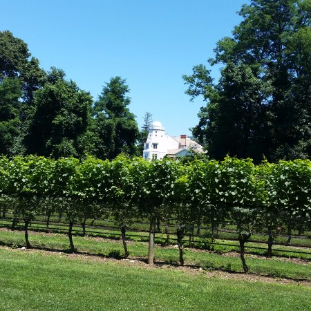 Smithtown, Estado de Nueva York: Next to the vineyard, a home with its own observatory