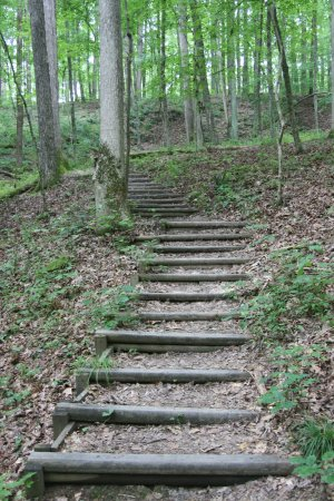 Nashville, IN: Stairs on trail 2 behind the lodge. It is not the easiest trail, but it is well work the effort
