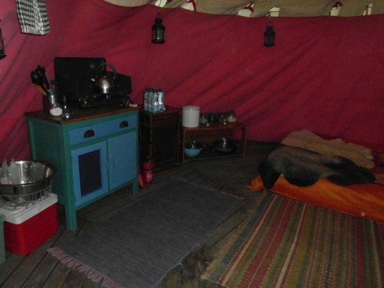 Machynlleth, UK: Look inside the tipi - for your basic needs there is bed, gas cooker, camp fridge, table, chimin