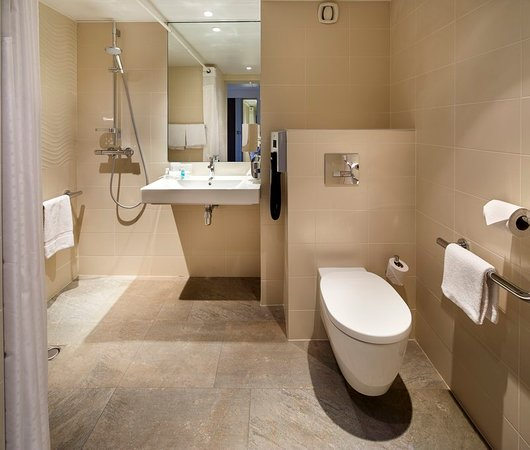 Contemporary ADA/Wheelchair Accessible Roll In Shower - Picture of ...