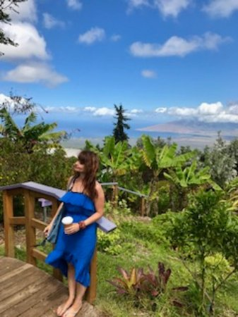 Made a stop at the Alii Kula Lavender farm to soak up the views and coffee