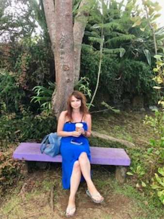 Kula, Hawái: Drinking lavender coffee in the lavender garden