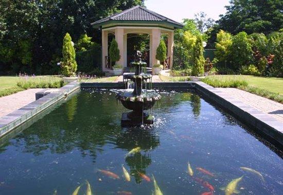 Empangeni pictures traveller photos of empangeni for Koi pond designs south africa