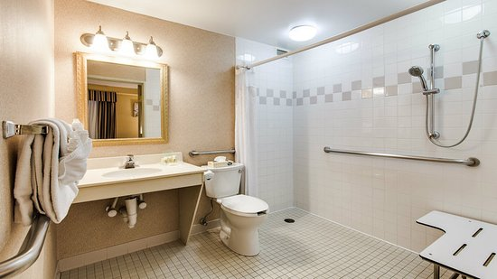 Holiday Inn Chicago Downtown: Accessible Roll In Shower