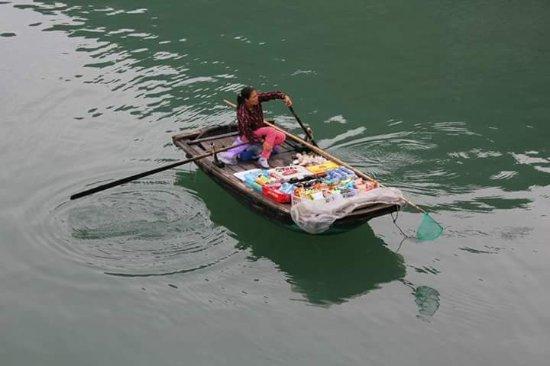 Hai Phong, Vietnam: FB_IMG_1500605108770_large.jpg