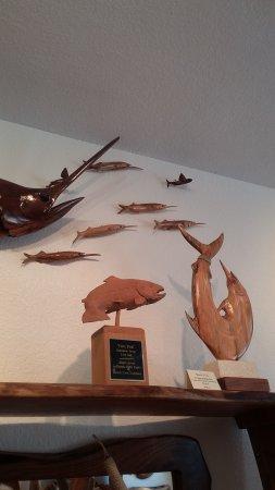 Tavernier, FL: varied sizes