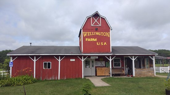 Grayling, MI: Wellington Farm