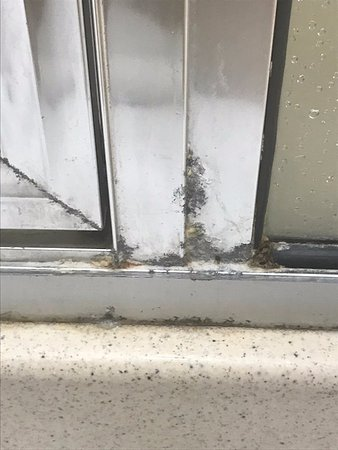 Holiday Inn Resort Wrightsville Beach: Unfortunately, lots of mold in and around shower and tubs