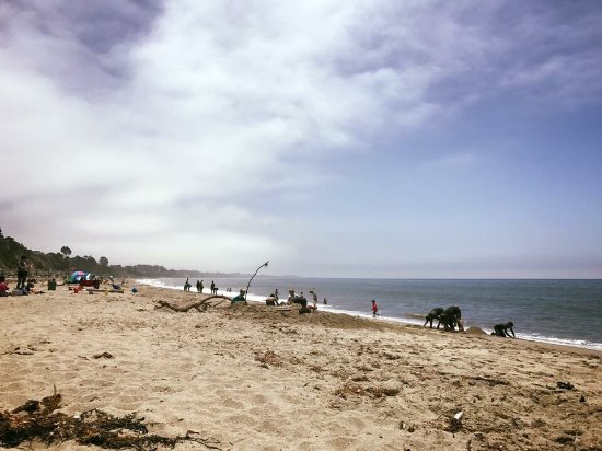 Aptos, Californië: photo0.jpg