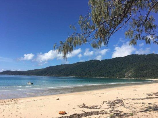 Ingham, Australia: Our camping spot!