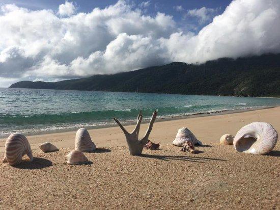 Ingham, Australia: Island views