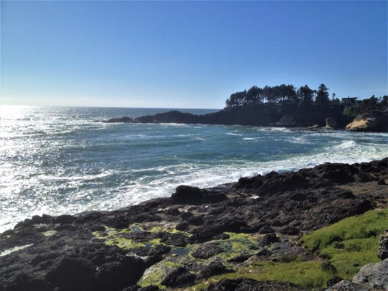 Depoe Bay, OR: another view across from Gracie's Sea Hag Restaurant