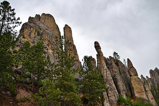 Custer State Park: Needles Highway