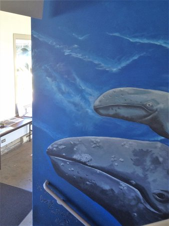 mural inside the Whale Watching Center - Depot Bay, Oregon