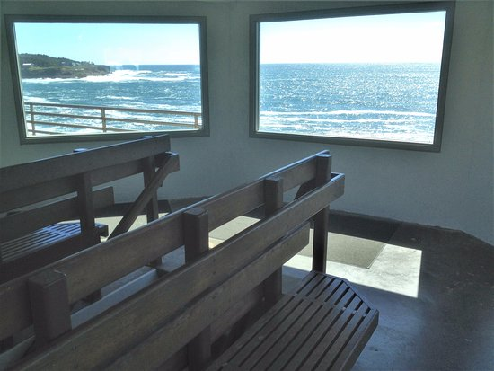 upper viewing windows at the Whale Watching Center - Depot Bay, Oregon