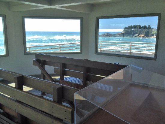 more viewing windows at the Whale Watching Center - Depot Bay, Oregon