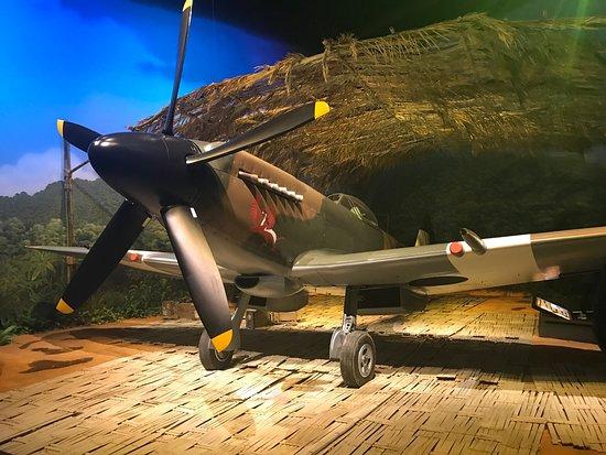 Omaka Aviation Heritage Centre: photo1.jpg
