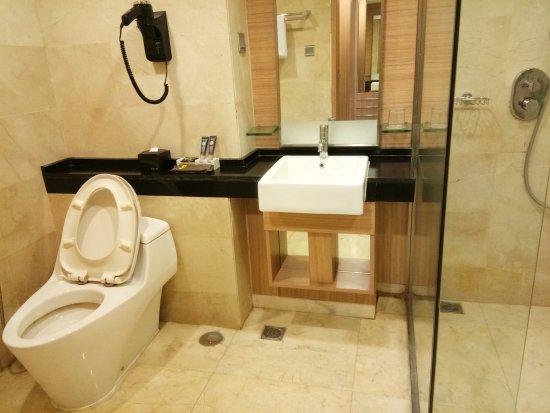Novotel Surabaya Hotel and Suites: Standing Shower