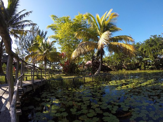 Mahavelona, Madagascar: jardin