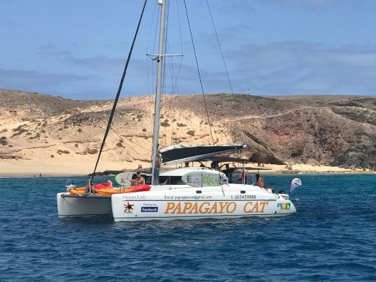 ‪Papagayo Catamaran‬