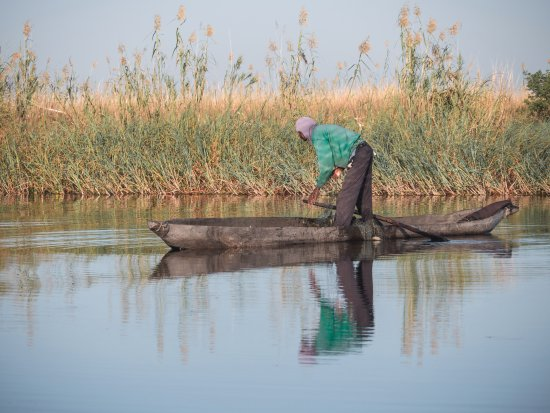 Kasane, Botswana: Local Fisherman